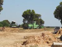 Domaine Ben Saida: Vente Cereale biologique à sfax